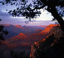 Grand Canyon South Rim #3 by Mike Norton