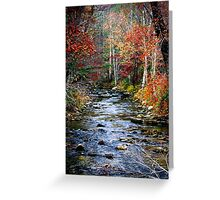 Little Eastatoe River Greeting Card