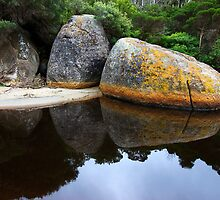 Rock reflection - Tidal River by Hans Kawitzki
