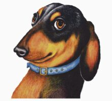 Dachshund t-shirt 898 views by Margaret Sanderson