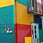 Color festival by Miron Abramovici