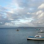 Boats on the Bay, Sorrento by Tiffany Dryburgh
