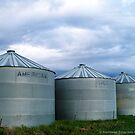 Montana Farm Silos by rocamiadesign