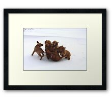Wrestle Mania -10 Framed Print