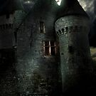 chateau de bridoire by marie pierre de cara