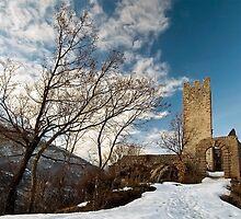 Castel Belfort by Antonio Zarli