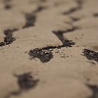 sand waves by ChrisH77