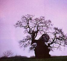 Grumpy Tree Man by MissJones