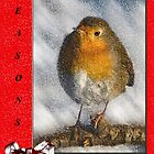 Christmas Card Version II by Chris Clark
