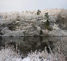Snowy Lake Scene by EarlCVans