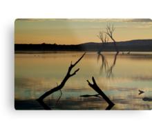 Dead Trees, Lake Fyans, Grampians. Metal Print