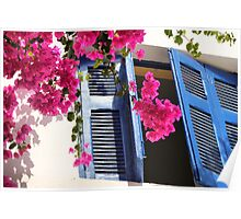 Bouganvillea at my window Poster