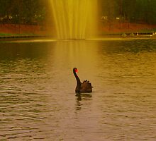 lady of the lake by jimofozz