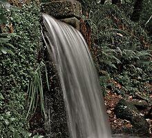 Waterfall at Kennall Vale by Simon Marsden