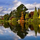 Autumnal colour at Sheffield Park by Tony Jones