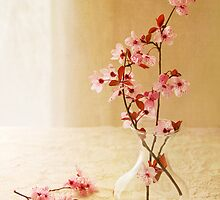 Plum Blossom Still Life by Colleen Farrell