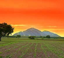 Indian landscape by snehit