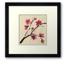 Flowering cherry. Spring. Framed Print