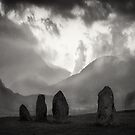 The Watchers by marshall calvert  IPA