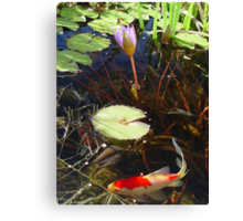 Koi and Waterlily Canvas Print
