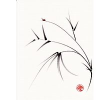 """Sugar Plum""  ink brush painting on paper Photographic Print"