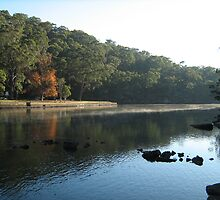 Audley, Royal National Park by Patricia  Knowles
