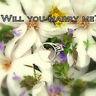 Marry Me by Valeria Lee