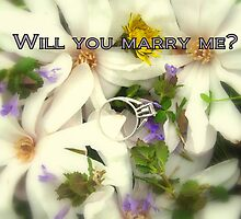 Marry Me by Valeria Lee