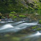 Riwaka River by Paul Mercer
