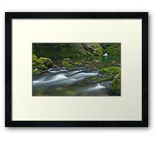 Riwaka River Framed Print