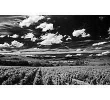 Blaceret, France [Pseudo-IR] Photographic Print