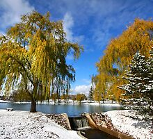 Scenic winter landscape by snehit