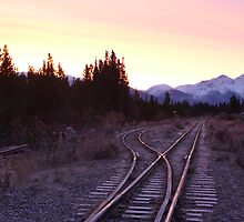 White pass and Yukon railroad at sunrise by Istvan Hernadi