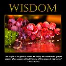 Wisdom by Trudy Wilkerson