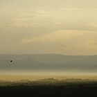Early morning ballooning III - Melbourne by Lucas D'Arcy