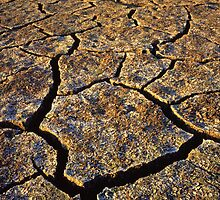 Drought by Mike Norton