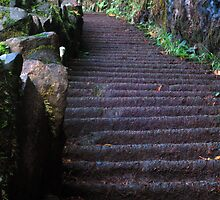 Silver Falls Stairs by USGolfers