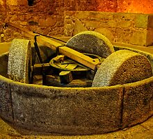 Romanesque olive mill, Idanha-a-Nova, Beira Baixa, Portugal by Andrew Jones