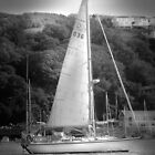 Yachting on the River Fowey  by Catherine Hamilton-Veal  ©