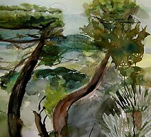 Trees from Cortona by May Hege  Rygel