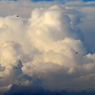 In the clouds.. by DebYoung