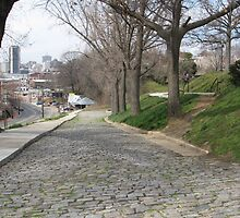 Cobblestones Libby Hill Park by AJ Belongia