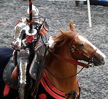 Jousting at Royal Armouries, Leeds by Astroid