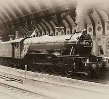 Flying Scotsman by Ray Clarke