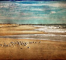 Cold Beach Crowd by Evelina Kremsdorf