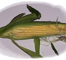 Corn by Jonice