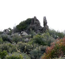 Desert burial site....... by ThomHull