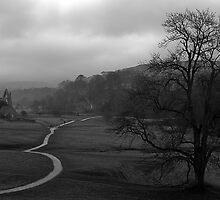 Bolton Abbey by ShaunDaysh