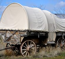 Covered Wagon by Susan Vinson