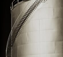 Snaking Ladders by Peter Hodgson